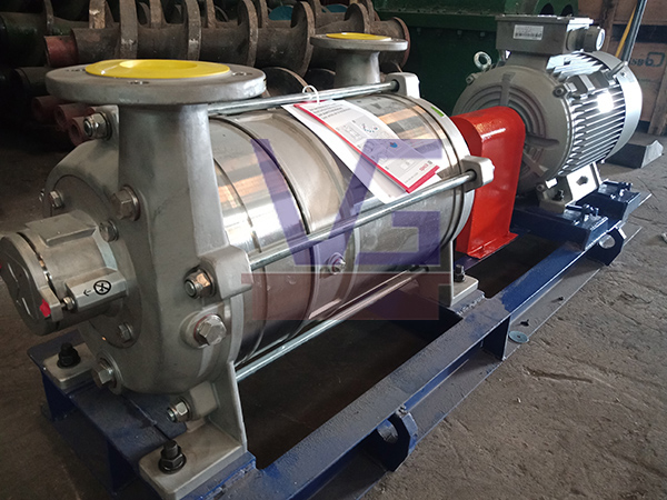 Delivery of Speck Pumpen - Vacuum Pump for Refinery Plant in Riau