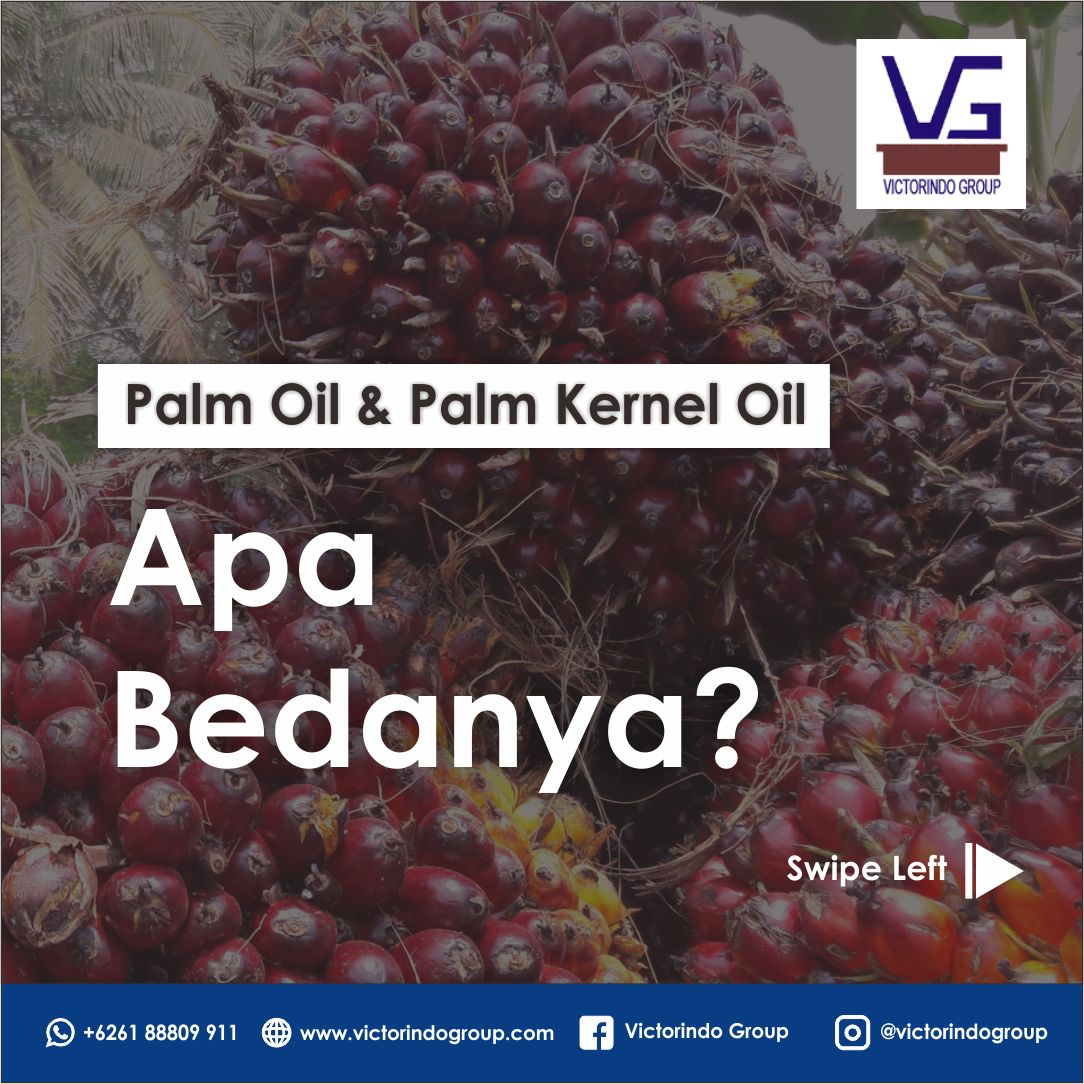 What's the difference? Palm oil vs palm kernel oil